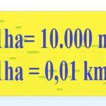 1 ha bằng bao nhiêu m2? 2021 Công thức chuẩn xác nhất